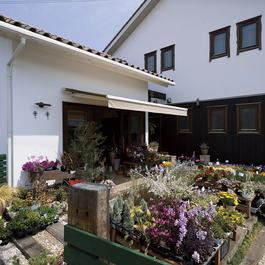 イノスの家「優秀デザイン賞」結露がない、爽やかな空気に包まれるお家